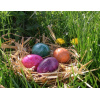 Ostern<div class='url' style='display:none;'>/kg/schuepfen/</div><div class='dom' style='display:none;'>kirchenregion-aarberg.ch/</div><div class='aid' style='display:none;'>918</div><div class='bid' style='display:none;'>12008</div><div class='usr' style='display:none;'>207</div>
